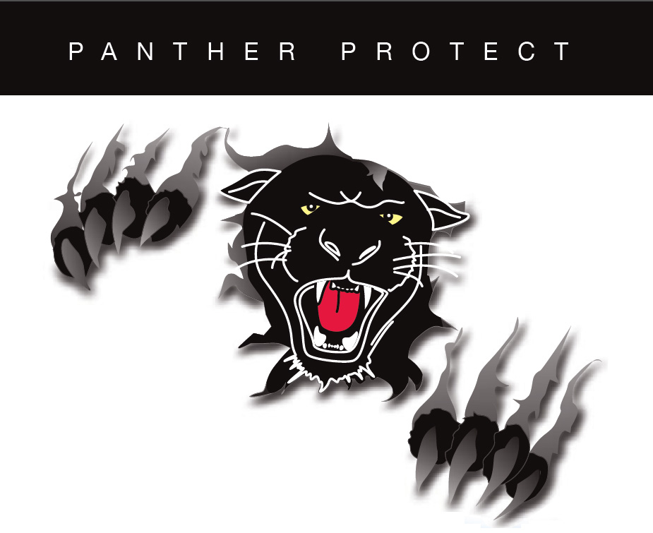Iron Curtains Panther Security Door System